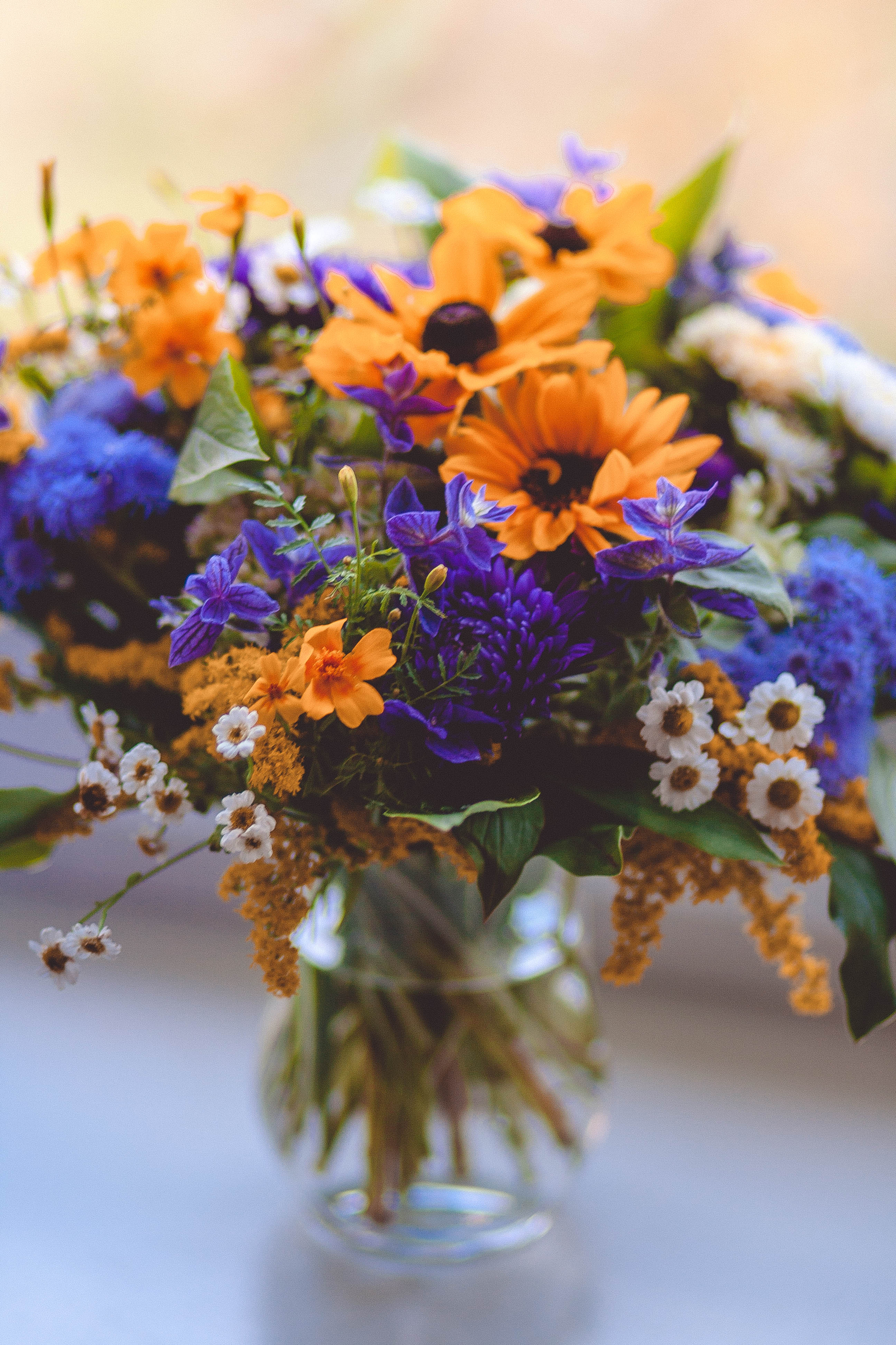 Microsoft Wallpaper Fall Orange Purple Green And White Flowers Decor 183 Free Stock Photo