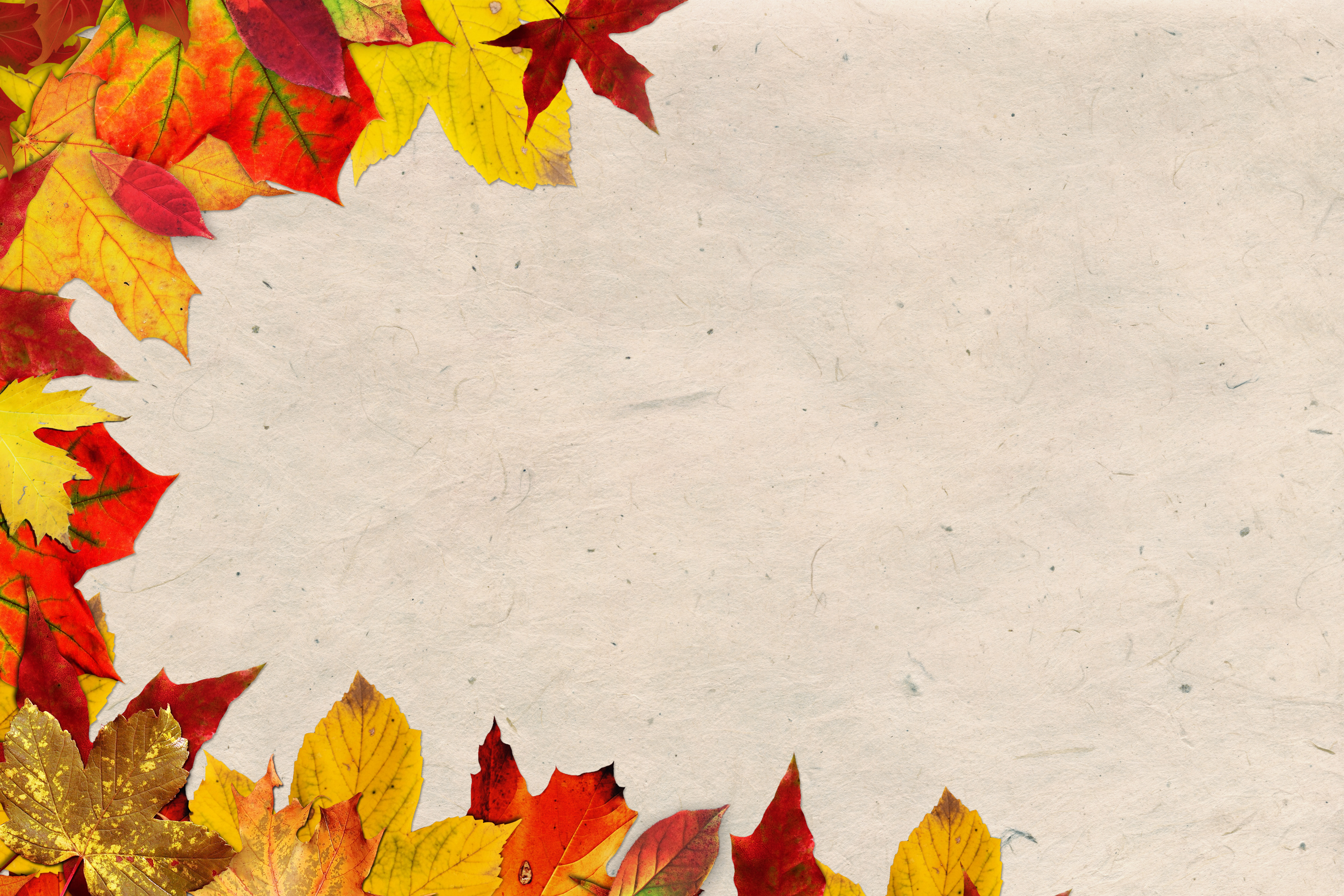 Thanksgiving Fall Wallpaper Free Stock Photo Of Autum Background Burlap