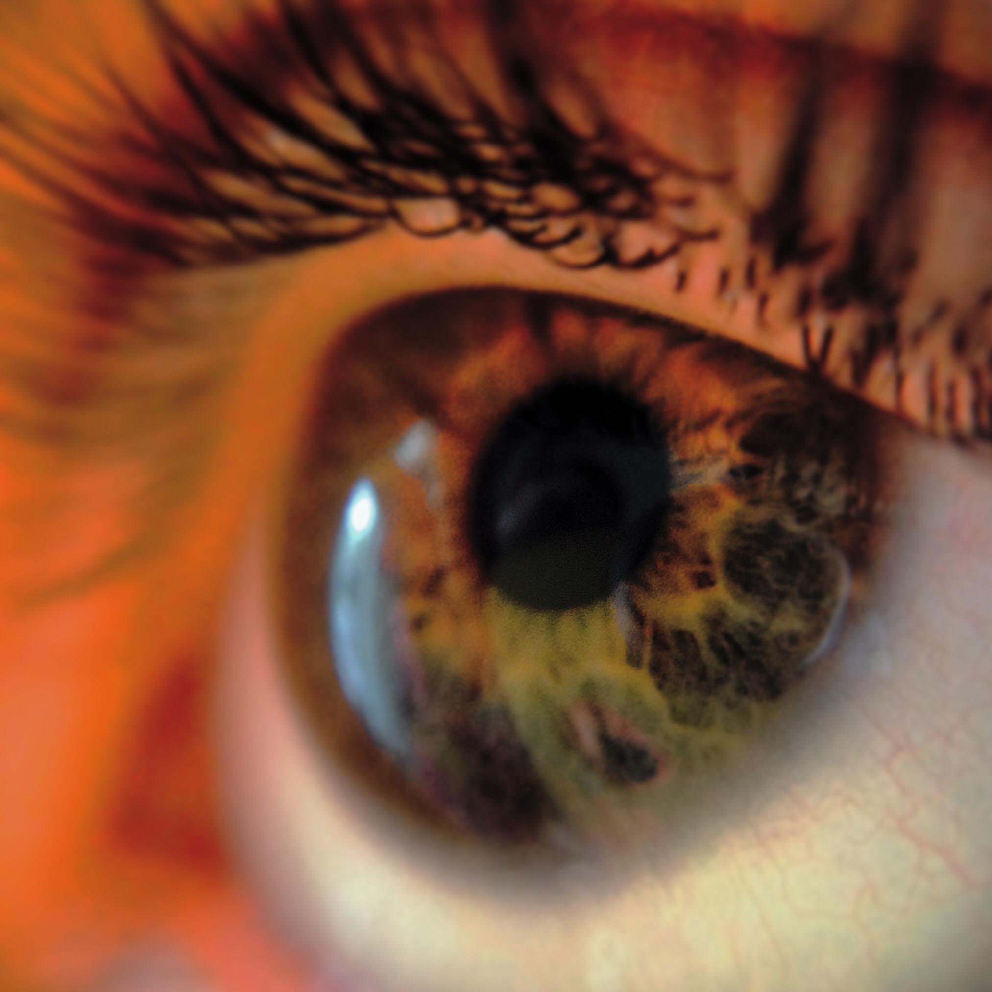 How To Change Wallpaper On Iphone 5c Free Stock Photo Of Close Up Eye Eyelashes