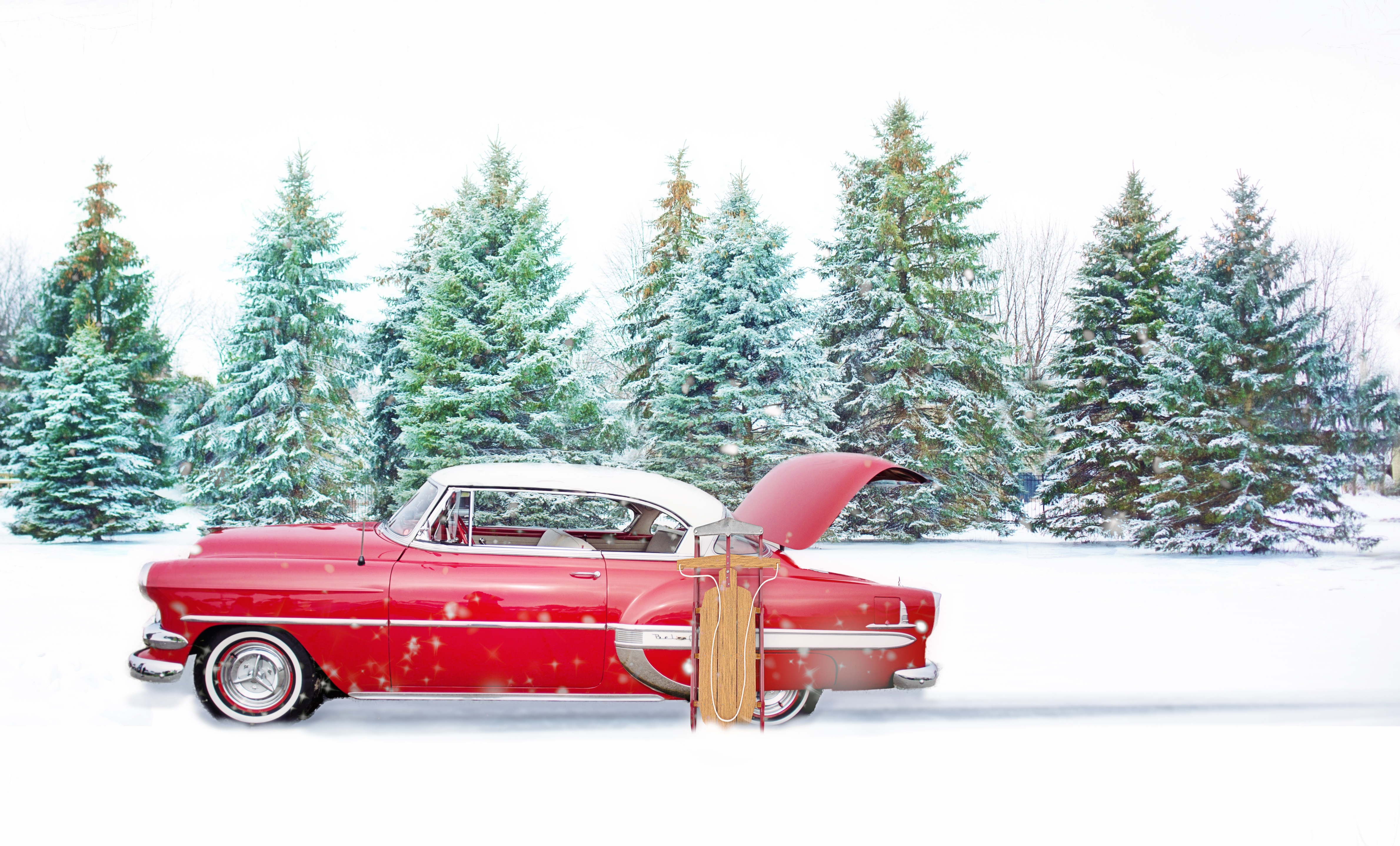 Cars The Movie Wallpapers Free Red Christmas Tree In Park 183 Free Stock Photo