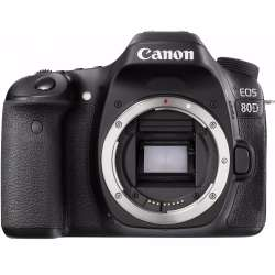 Small Crop Of Canon 80d Release Date