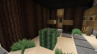 Black Modern House with tiny desert garden Minecraft Project