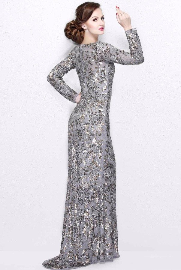 Silver Gowns with Sleeves  Dresses for Woman
