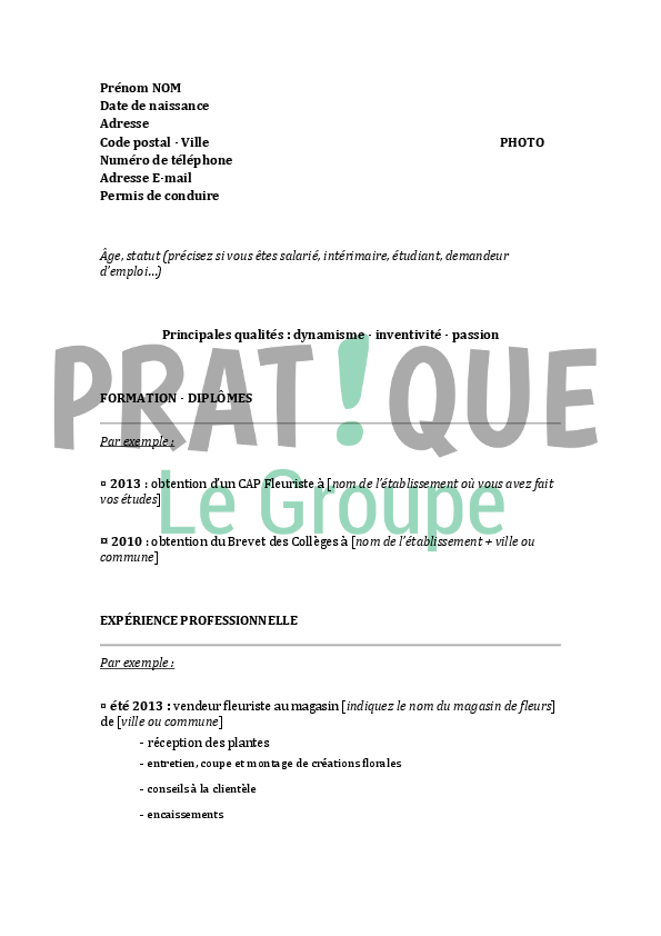 cv brevet des colleges