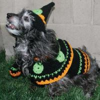 Dog Witch Costume Crochet Pattern from Red Heart Yarn ...