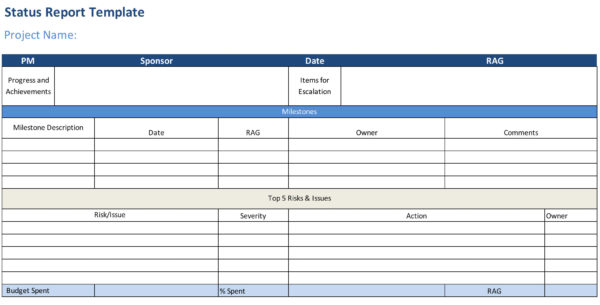 Status Report Template - ProjectManager - project status report excel