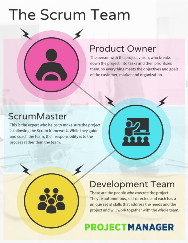 Scrum Roles The Anatomy of a Scrum Team - ProjectManager