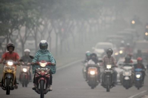 Jurnal Ispa Indonesia Manfaat Lada Manfaat Sehat Alami Kabut Asap Menyelimuti Pekanbaru 140227151805 360jpg