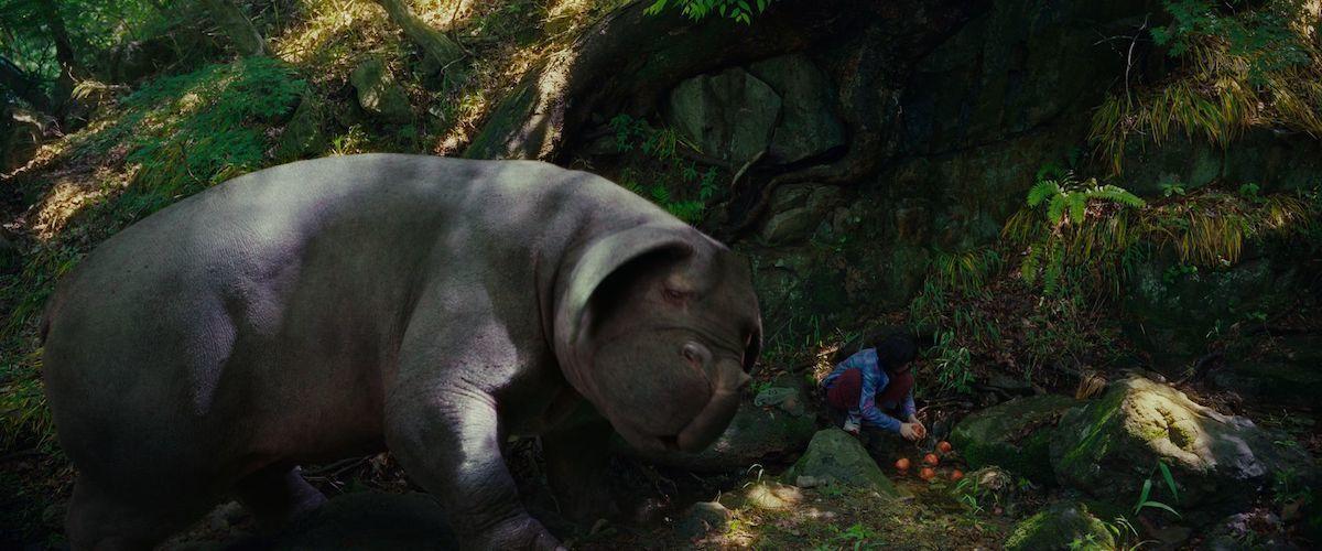 Creature Girl Wallpaper Okja Movie Review Amp Film Summary 2017 Roger Ebert