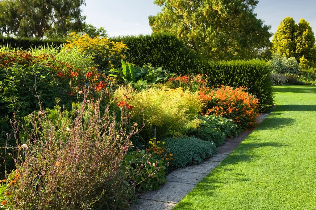 If you want color, it\u0027s flowers over foliage for your garden border - solid green border