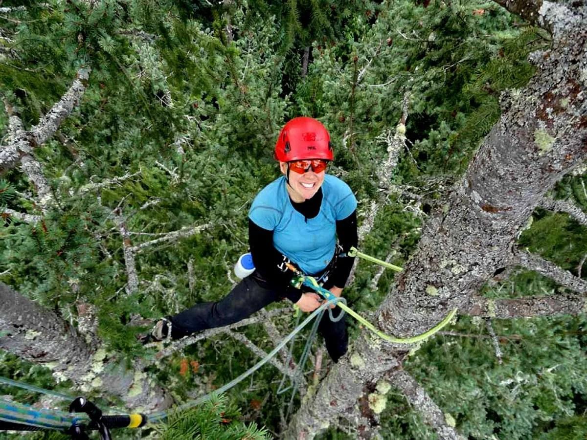 Arborist Katy Bigelows Cool Job Climbing Trees And