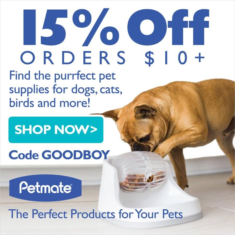 Large Of Dog Iq Test