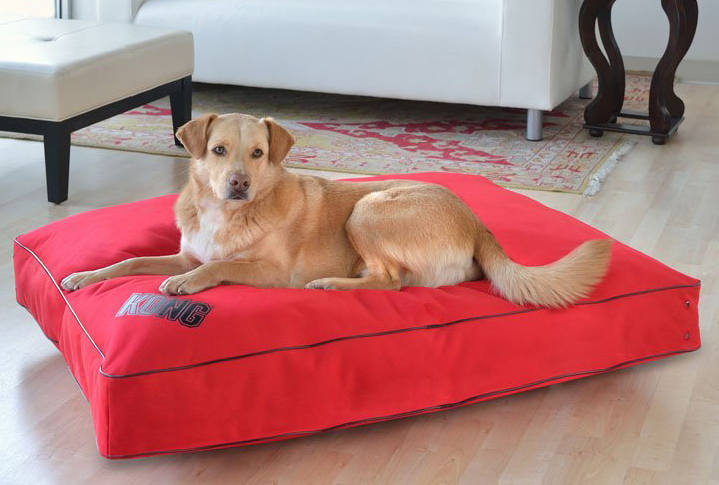Kong Dog Bed Large Red Buy Now And Save 40 Bowhouse
