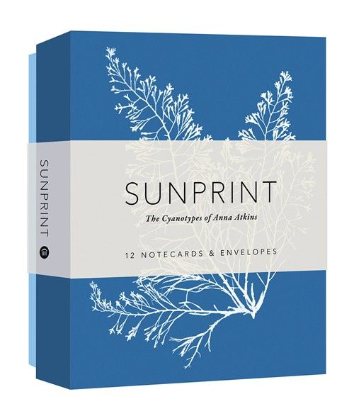 Sunprint Notecards - Portage Bay Goods
