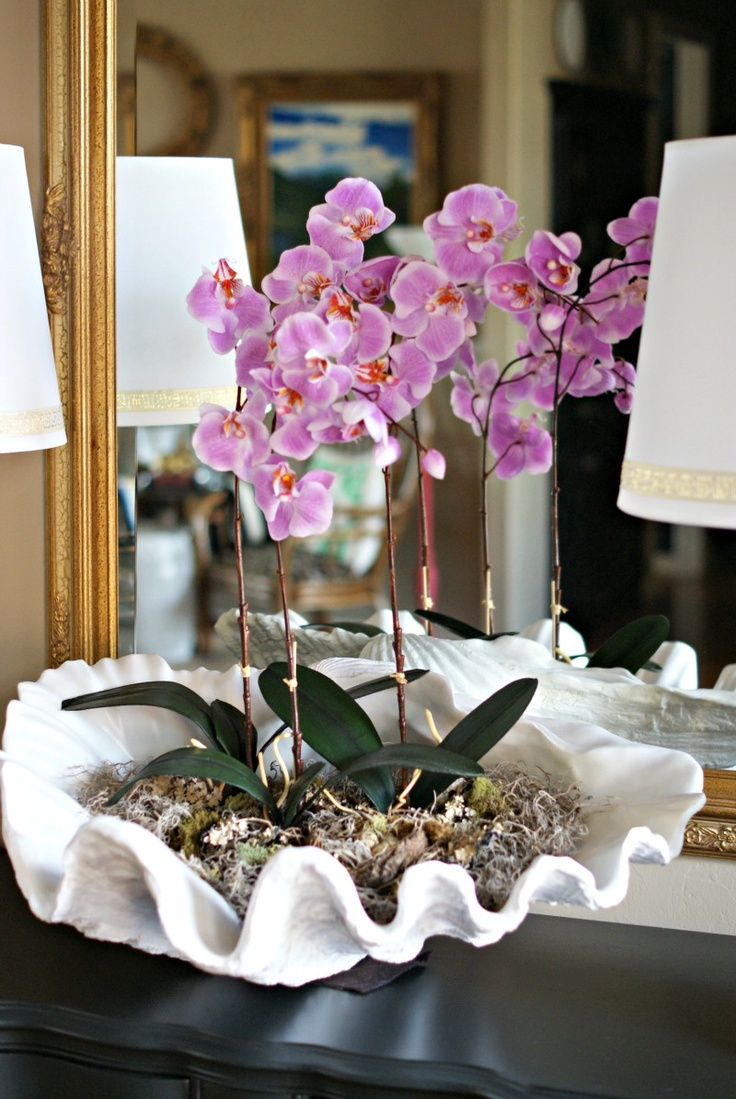 Really Cute Teal Teal Wallpaper Weekend Decorating Idea Orchid Shell Arrangement The