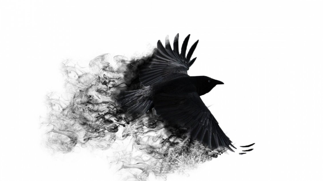Audi Black Cars Wallpapers Abstract Black Crow With Broken Wings