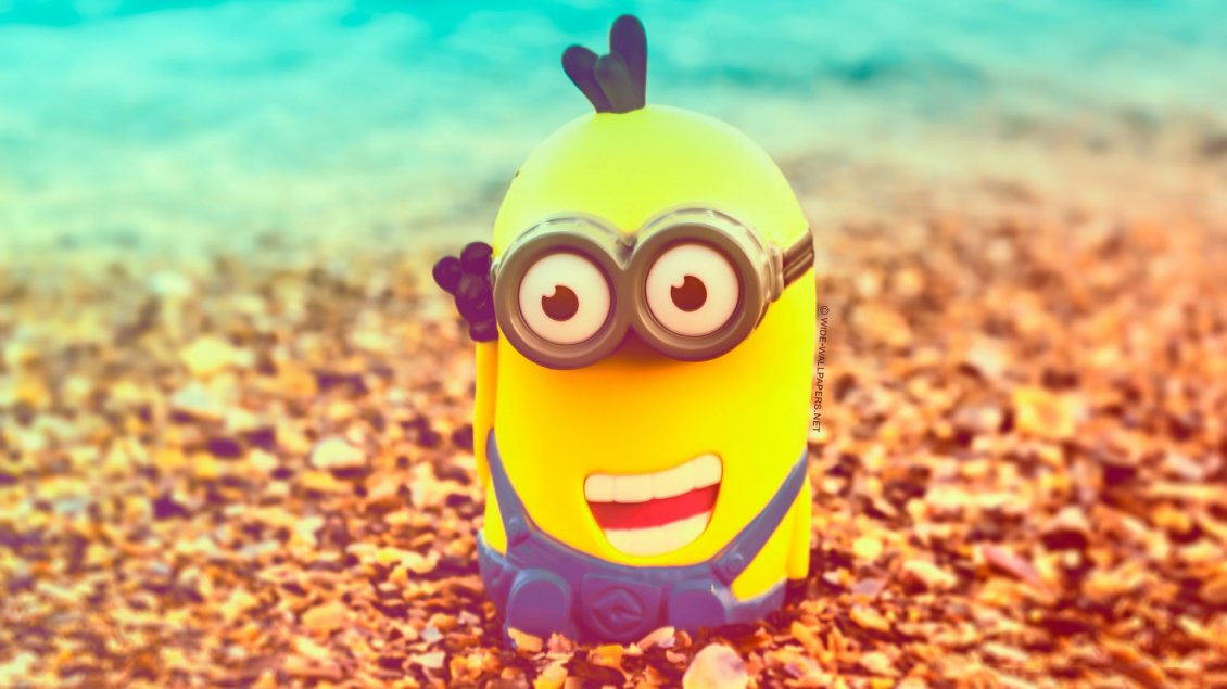 Cute Cartoon Face Wallpapers Minion With A Smile On Face Anime Wallpaper