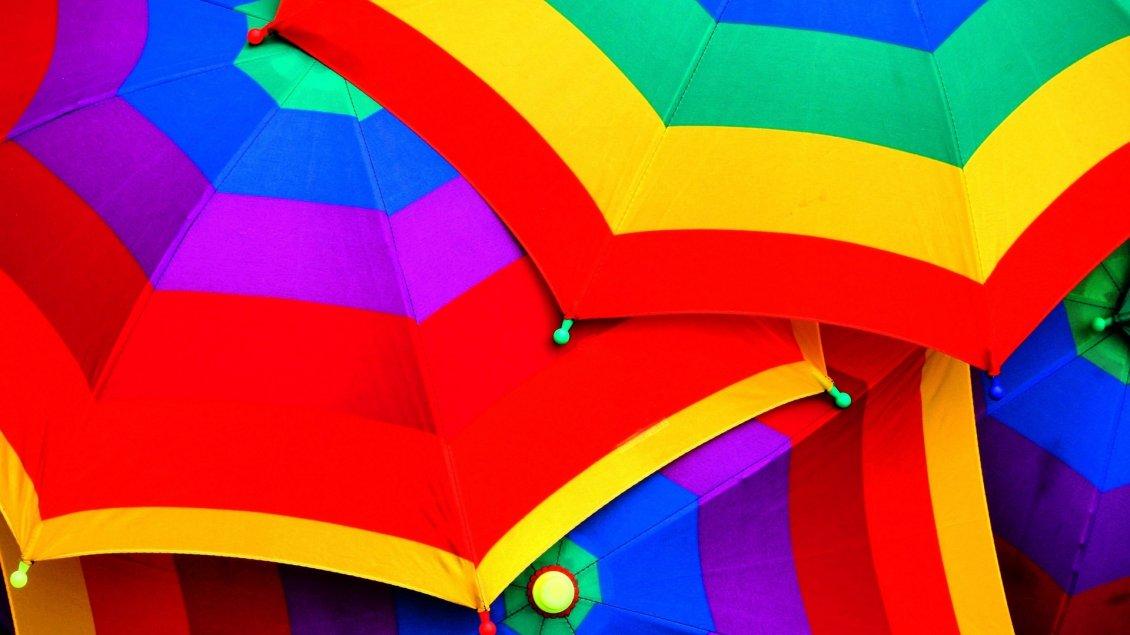 Cute Cartoon Birds Wallpapers Many Colorful Umbrellas Hd Wallpaper