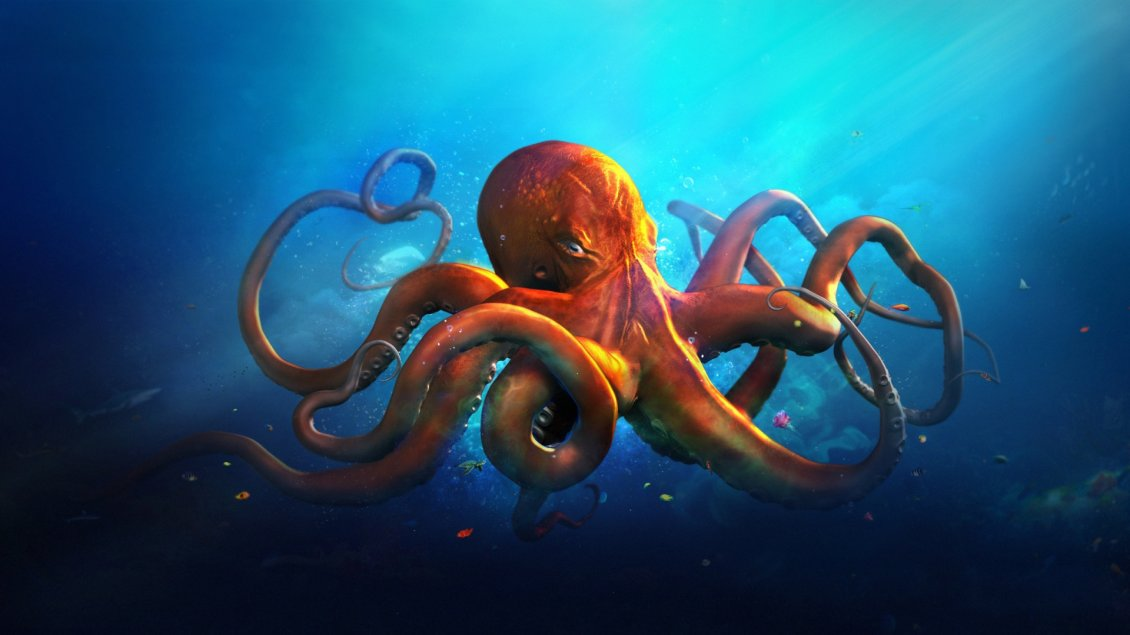 Girls Of The Wilds Wallpaper An Orange Octopus In Blue Sea Water