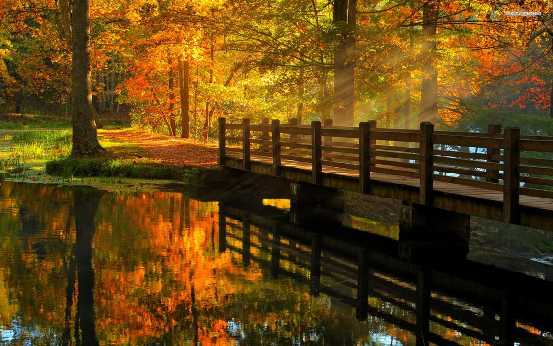 Falling Leaves Wallpaper Screensavers Wooden Bridge Over The River Beautiful Autumn Day