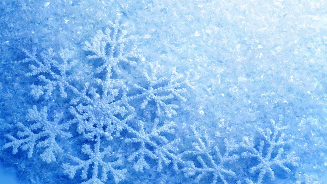 Bugatti Hd Wallpapers Free Download Perfect Snowflake Frozen Blue Snow