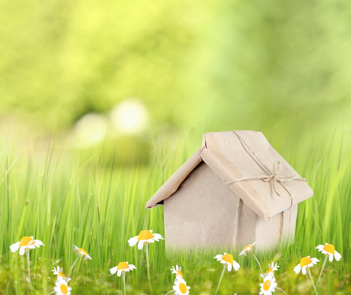 Cute Cartoon Bird Wallpapers Small House Gift And Spring Flowers Hd Wallpaper