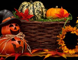 Free Fall Pumpkin Desktop Wallpaper Halloween Hd Wallpapers Page 1