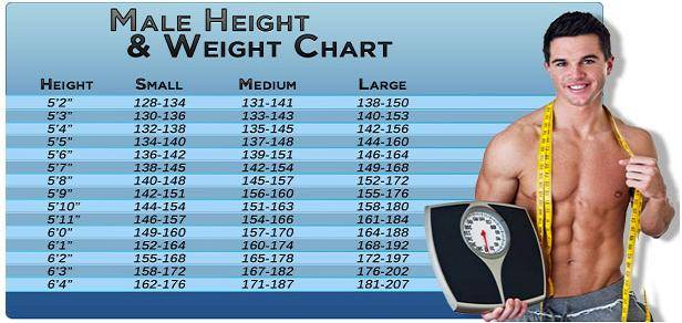 5 8 Height Weight Chart Image collections - chart design for project