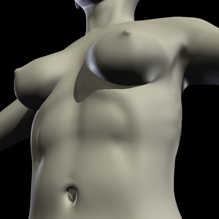 female body template 3d model