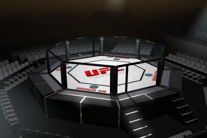 3d Octagon Wallpaper Octagon Arena Ufc Fighting 3d Model