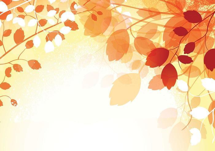 Fall Foliage Hd Wallpaper Caliente Oto 241 O Wallpaper Vector Descargue Gr 225 Ficos Y