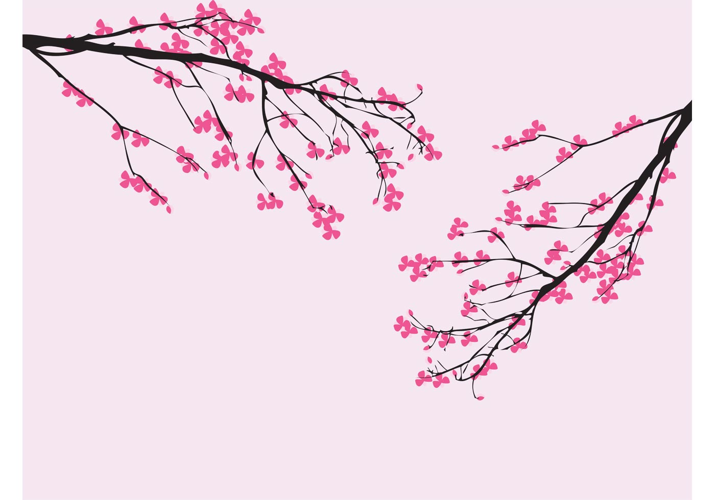 Tattoo Bonn Vector Cherry Blossom - Download Free Vector Art, Stock
