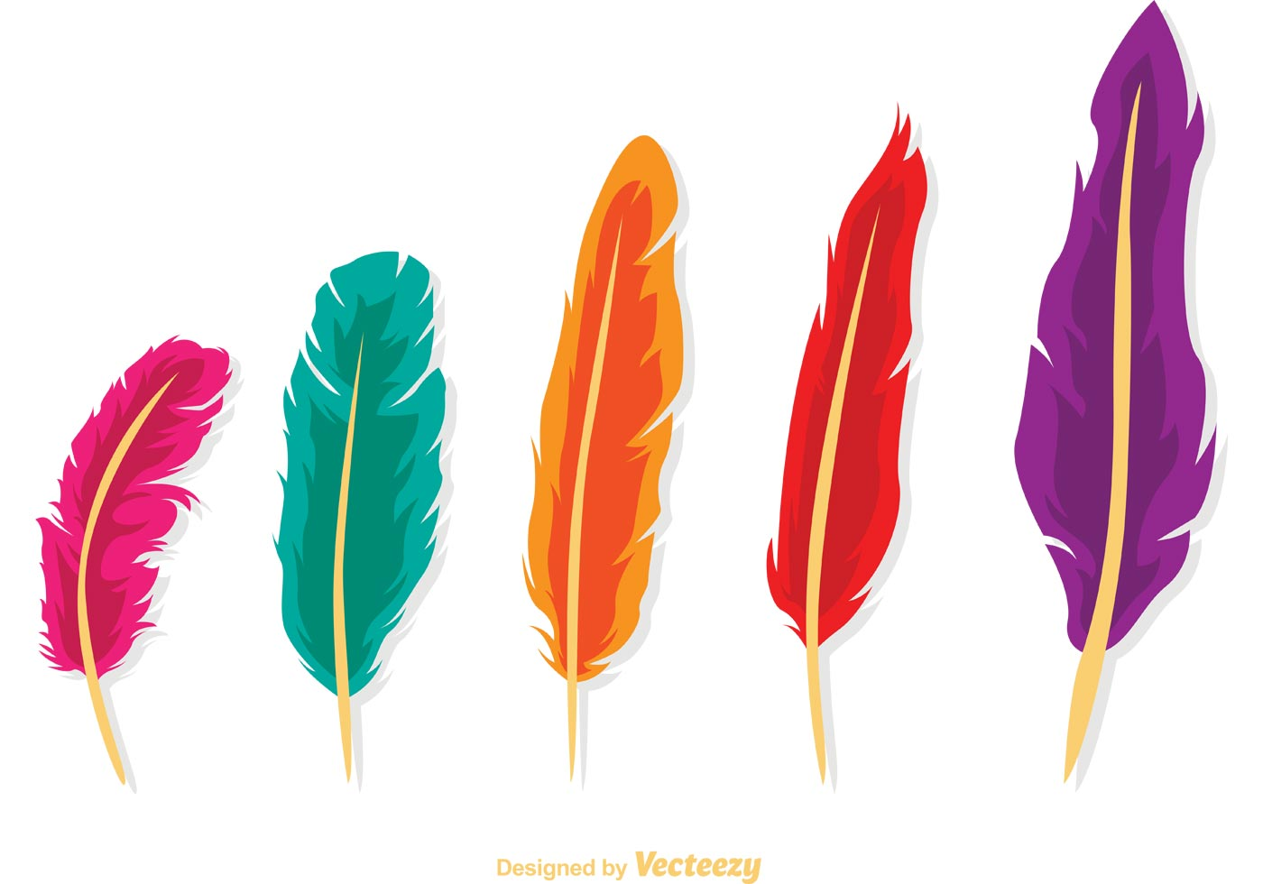 Fall Feather Wallpaper Isolated Feather Vector Pack Download Free Vector Art