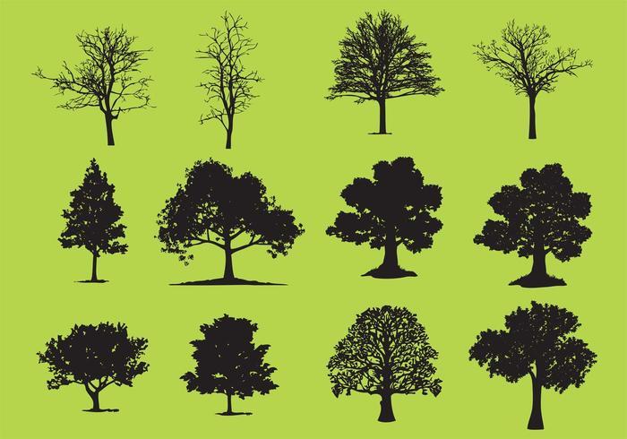 Tree Free Vector Art - (15003 Free Downloads)
