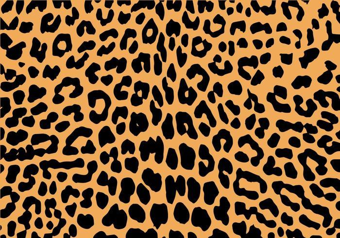 Safari Animal Wallpaper Free Leopard Print Vector Download Free Vector Art
