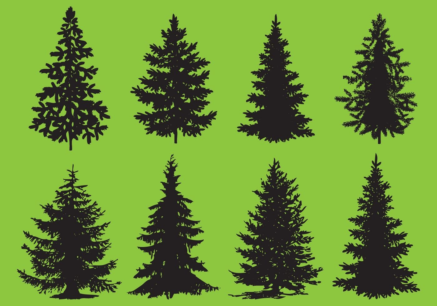 Christmas tree vector image royalty free stock image image 34973066 - Christmas Tree Vector Image Royalty Free Stock Image Image 34973066 Pine Tree Vectors Download Free Download