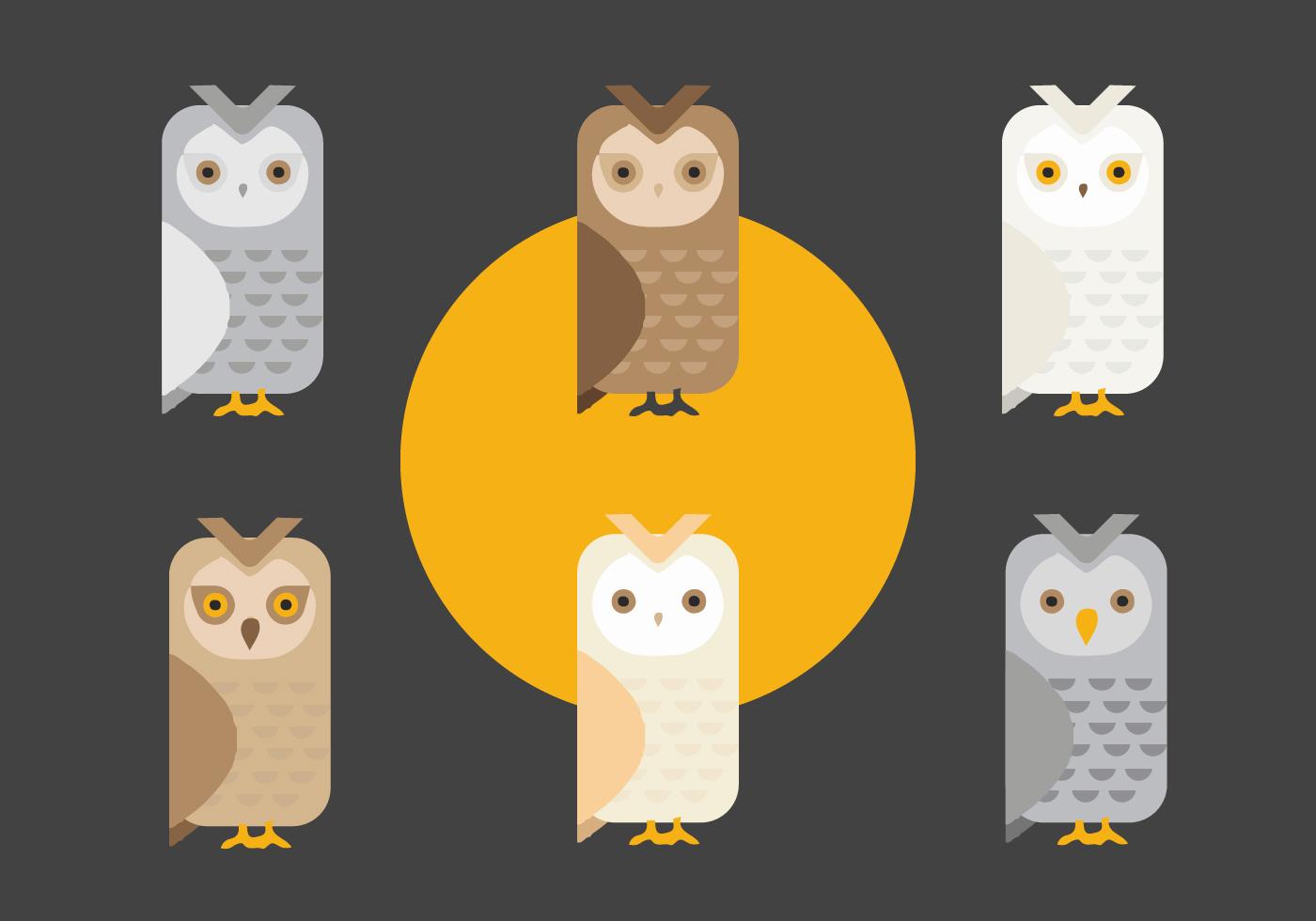 Cute Owl Cartoon Wallpaper Free Barn Owl Vector Download Free Vector Art Stock