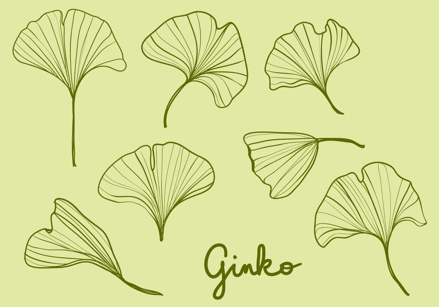 Fall Leaves Watercolor Wallpaper Hand Drawn Ginko Leaves Download Free Vector Art Stock