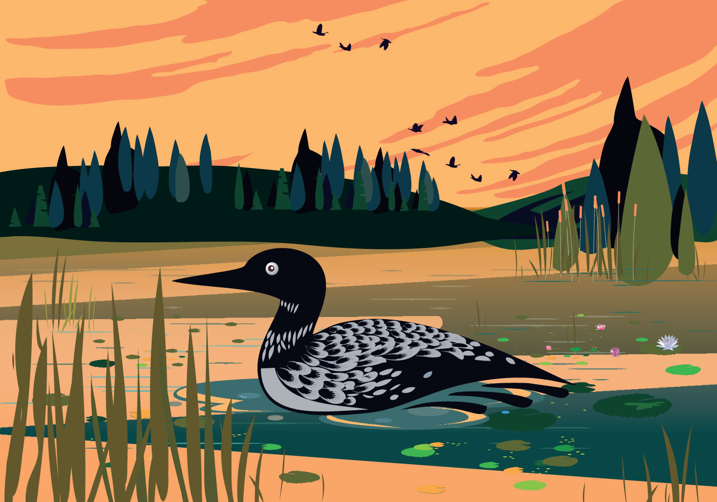 Black Textured Wallpaper Loon Swimming In Lake Vector Background Illustration