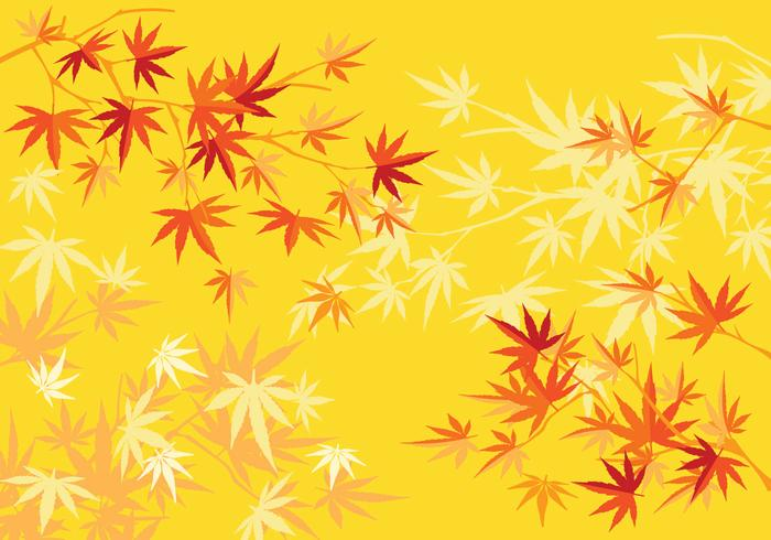 Autumn or Fall japanese Maple Tree and Leaves Background - Download
