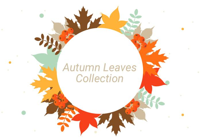 Maple Leaf Wallpaper For Fall Season Free Autumn Leaves Vector Background Download Free