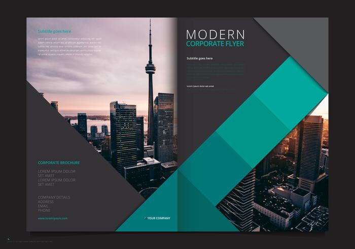 Professional Brochure Template Business Marketing Flyer Template