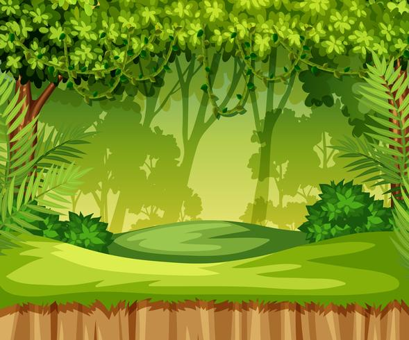 Pop Up Book Vector Green Jungle Landscape Scene Download Free Vectors