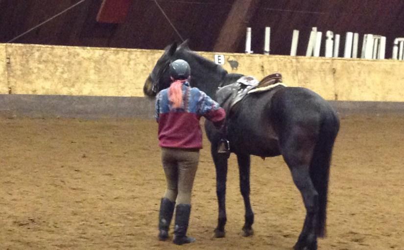 Mera hästbilder