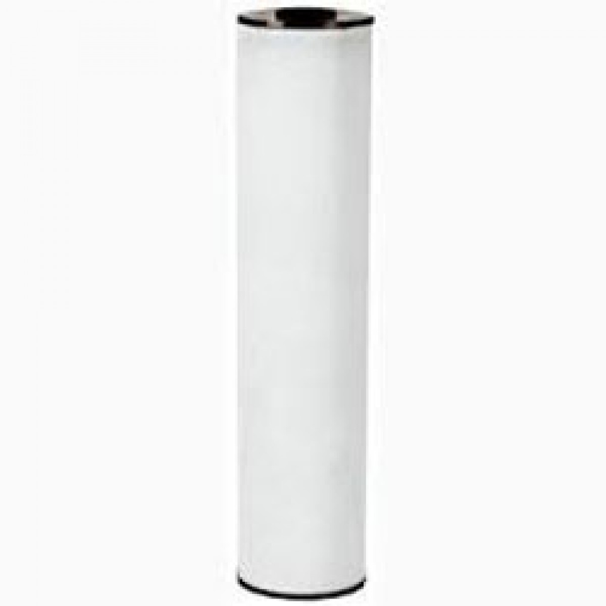 Watts Water Filter Replacement Watts Fpir Bb 20 Whole House Replacement Filter Cartridge