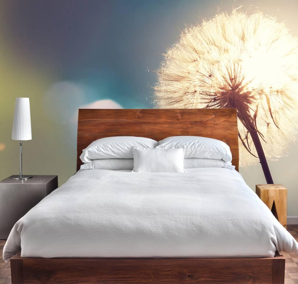 3d Wallpaper For Living Room Wall Fotobehang Paardenbloem 2 Walldesign56 Com