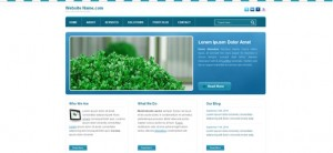 Blue Website CSS Template for Business