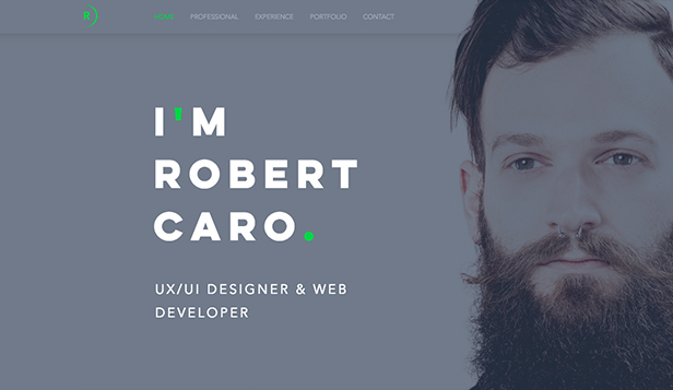 Portfolio  CV Website Templates Wix - web resume