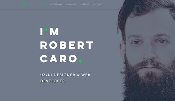 web developer online resume template