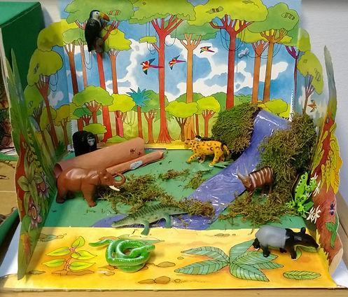 Rainforest dioramas